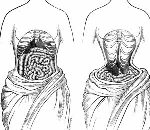 waist trained shape